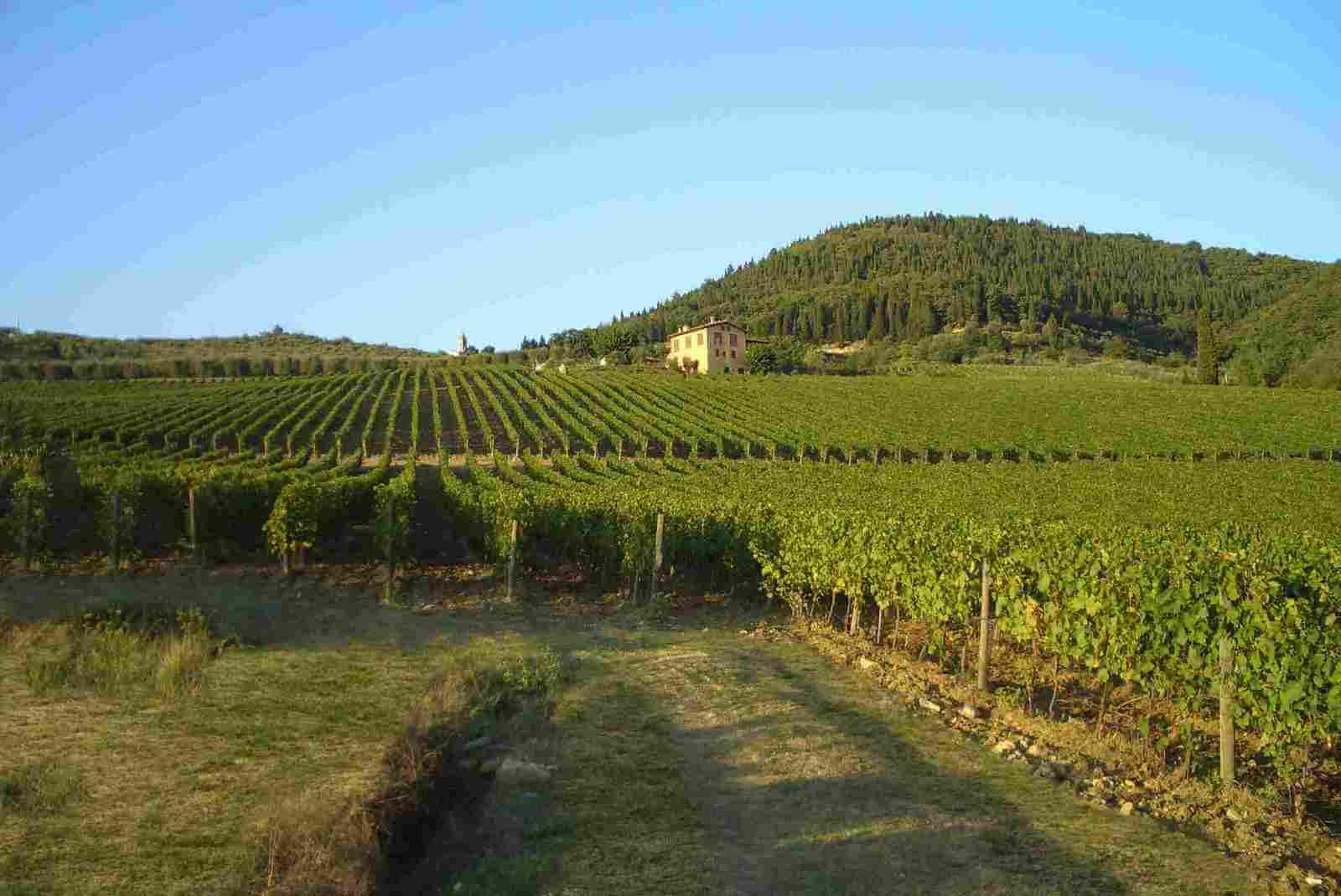 Винно-гастрономический тур по Тоскане