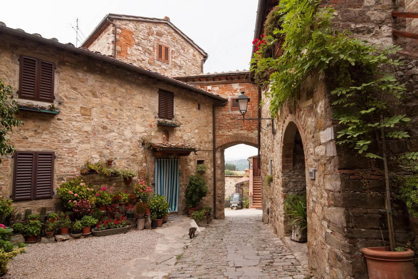Tour di Chianti Classico (foto)