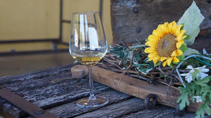 Белые вина Италии. Соаве (фото)