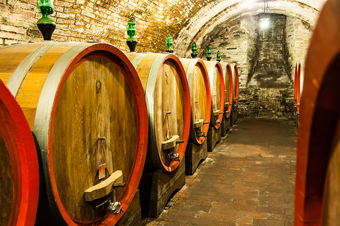 Дегустация вин Италии (фото винного погреба)