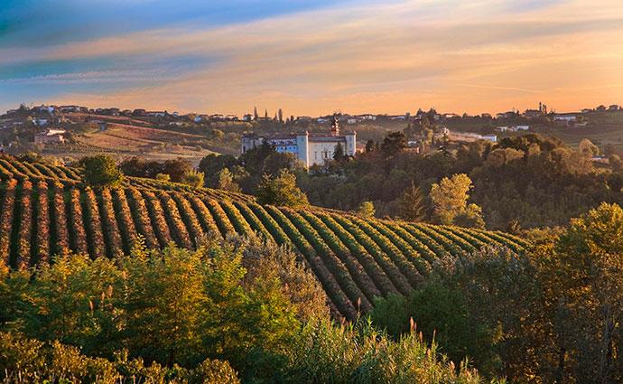 Винные путешествия по Италии (фото пейзажа)