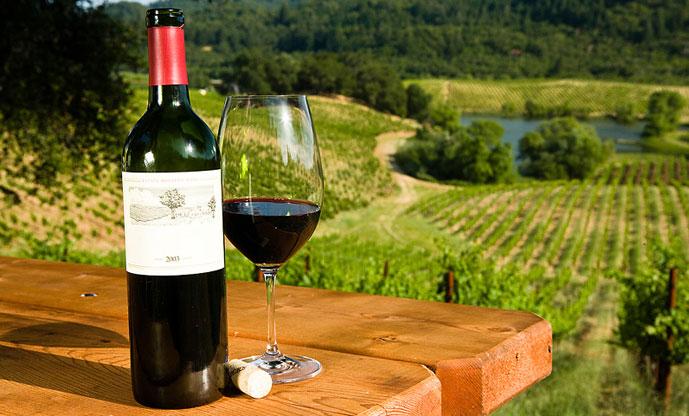 Заказать дегустационный тур (фото вина)