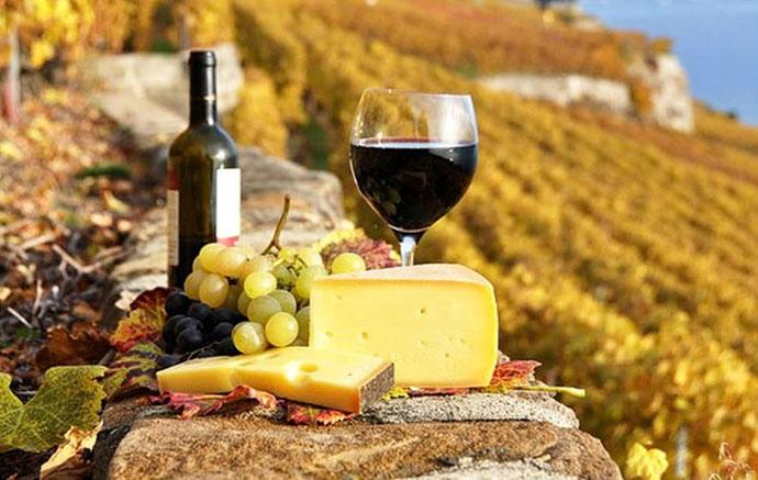 Гастрономический тур (Тоскана). Фото вина и продуктов