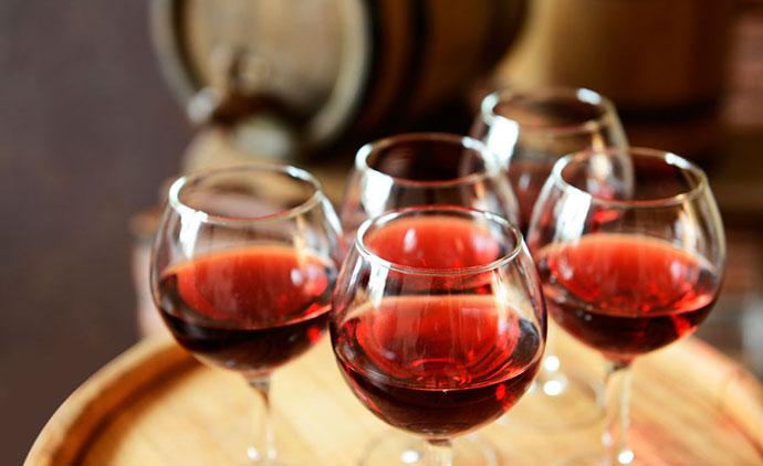 Дегустация вин (Вальполичелла). Фото
