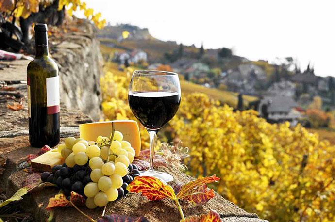 Эногастрономические туры Франчакорта. Фото вина и продуктов