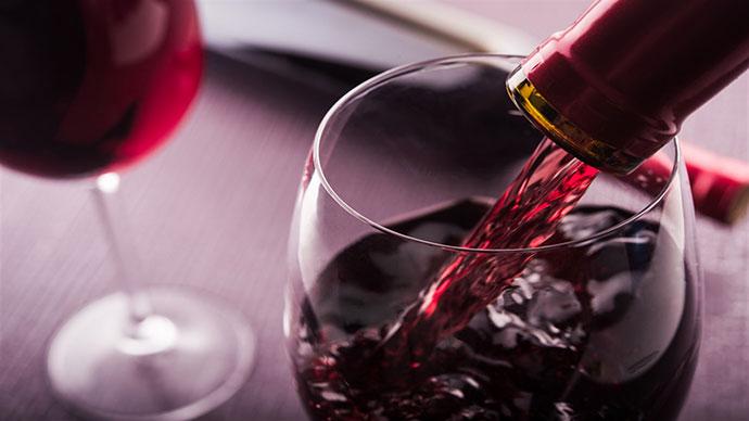 Дегустация вин (Болонья). Фото