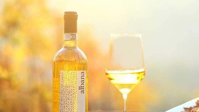 Как правильно выбрать белое вино (фото вина)