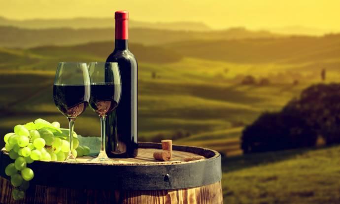 Винодельческие регионы Италии (фото)