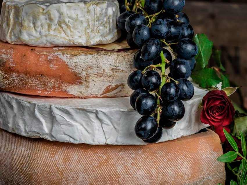 Wine Tour Italia: эногастрономические туры в Тоскане на русском языке