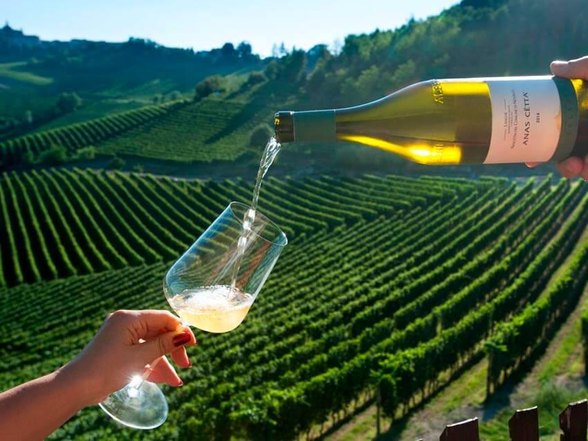 Wine Tour Italia: Заказать энотур по Италии